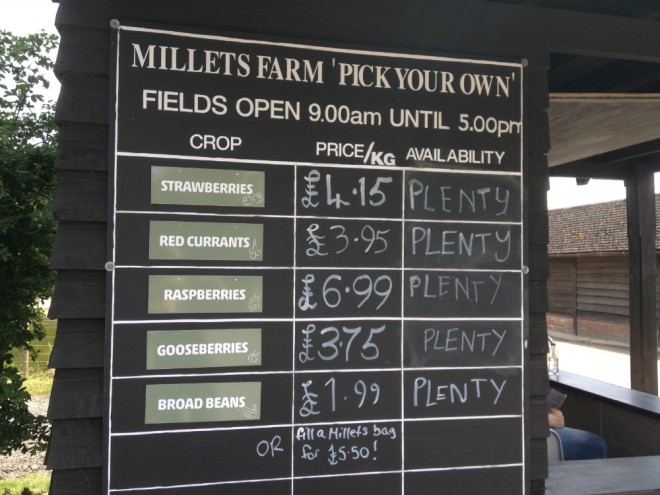 PYO, millets, pick your own, fresh fruit