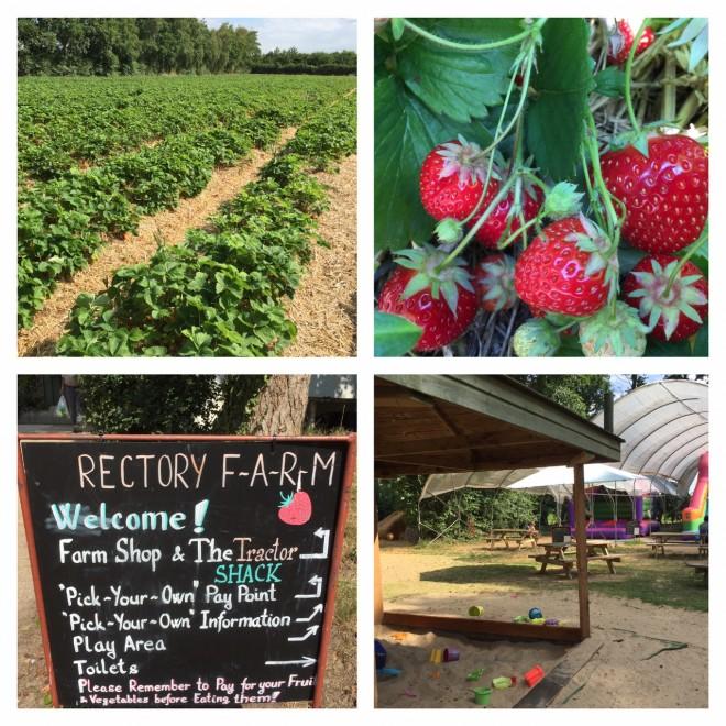 rectory farm, pyo, oxfordshire, stanton st john