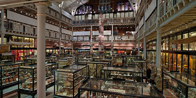 pitt rivers, museum, oxford, kids
