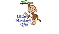 little monkey, gym, preschool, under 5s, kidlington, stonesfield