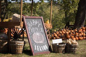 pick your own pumpkin, pumkin patches