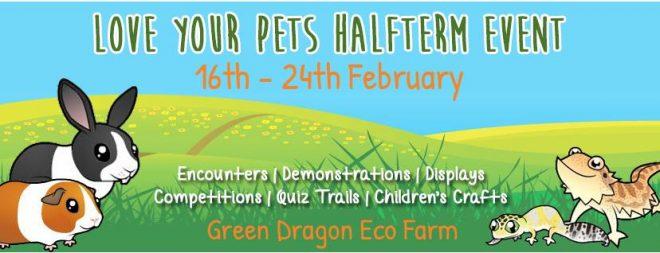 green dragon feb half term
